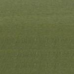 GREEN 909